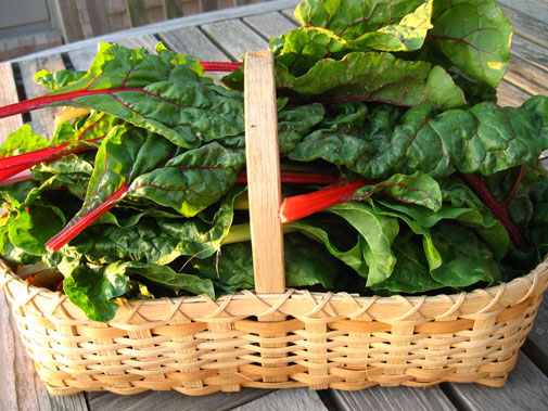 swiss_chard_basket.jpg